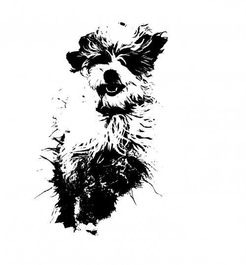 Dog Illustration Clipart