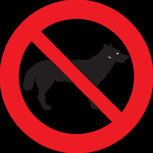 dogs pet animal