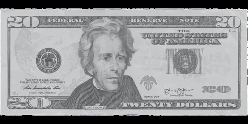 dollar twenty money