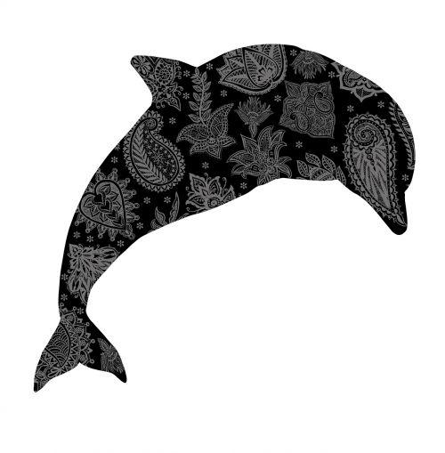 dolphin mandala meditation