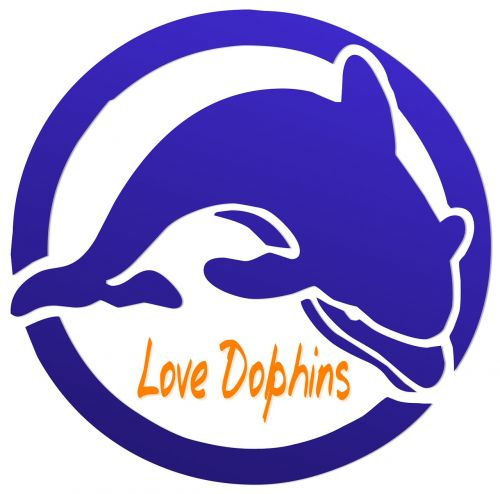 dolphin love conservation