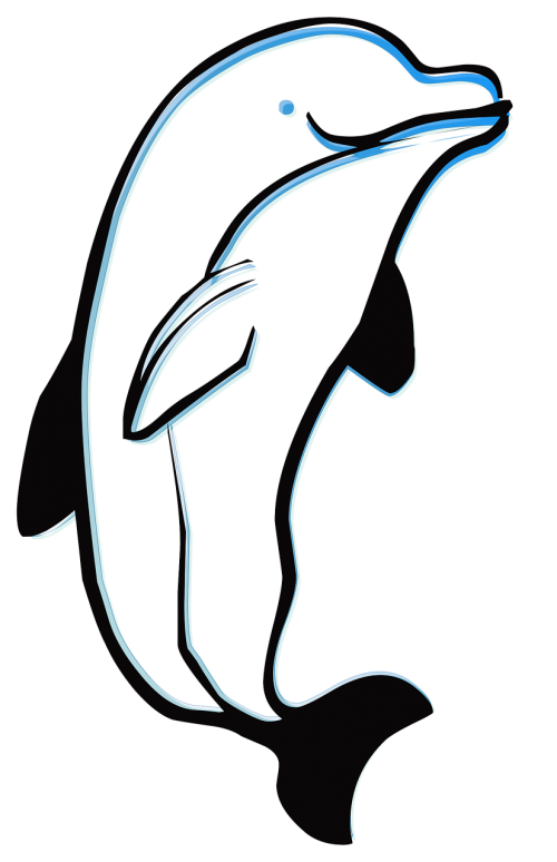 dolphin outline animal