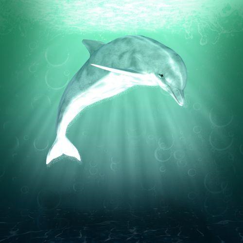 Dolphin Fantasy Water Art