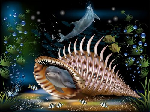 dolphins fantasy shell