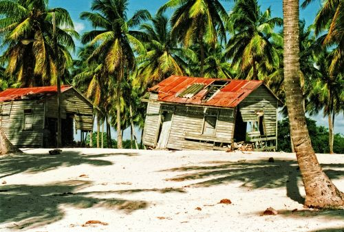 dominican,respublika,gražus,papludimys,palmės,supuvę,kateriai,smėlis,Kokosų palmės,atostogos,peizažas,kraštovaizdis,mėlynas,dangus