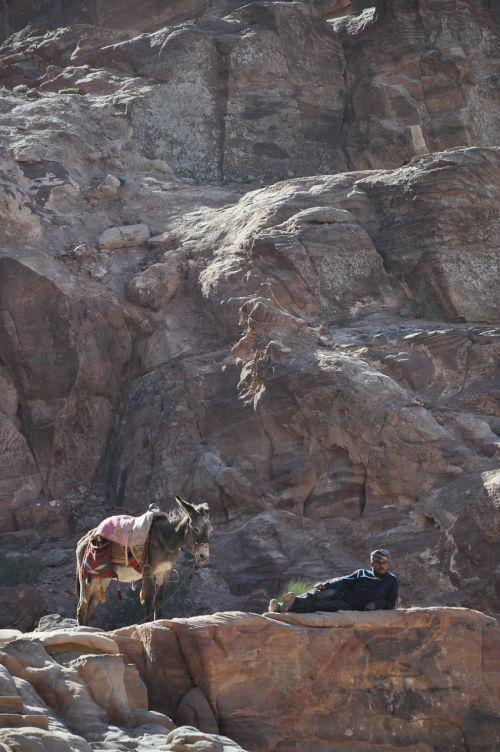 donkey jordan mountain
