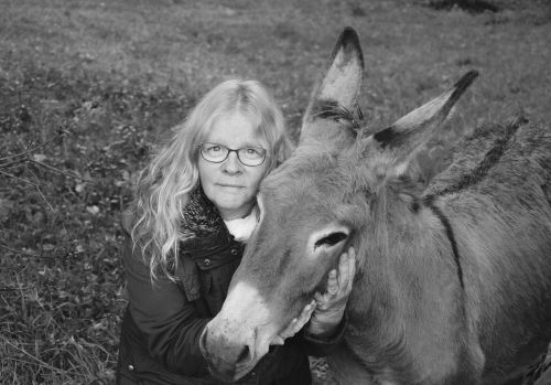 donkey woman complicity