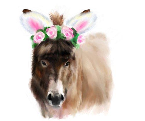 donkey  eastern  brown