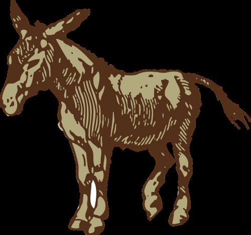 donkey brown animal
