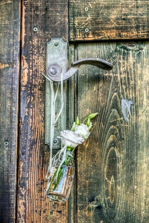 door door handle rose