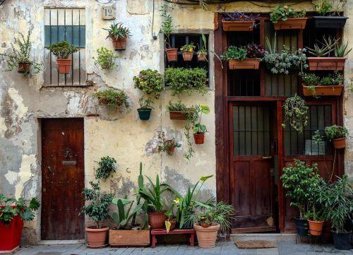 doors plants balcony