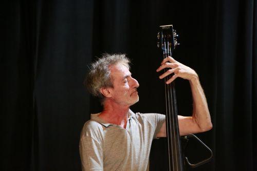double bass bassist musician