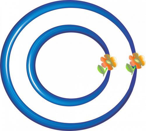 mėlynas, dvigubas, žiedas, rėmas, deko, dekoratyvinis, gėlės, 3d, tuščia, balta, fonas, menas, dvigubas žiedinis rėmas