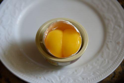 dvyniai, kiaušinis, dvigubas, trykas, dvigubas trynys