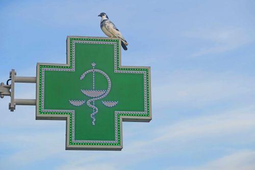 dove sky pharmacy