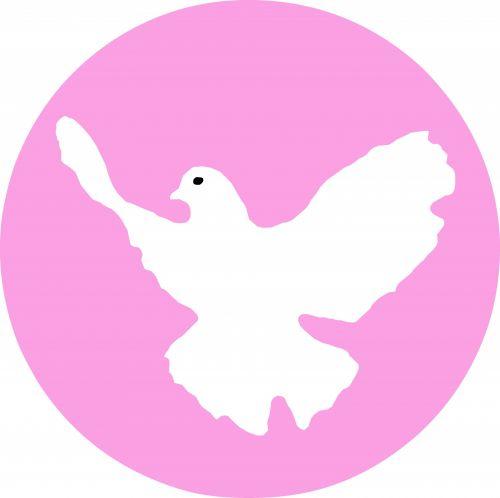 rožinis, balandis, izoliuotas, paukštis, balandis & nbsp, ramybė, taika, ženklas, simbolis, ramybė & nbsp, balandis, paprastas, taika & nbsp, simbolis, sparnas, balandis, siluetas, filialas, taikus, skraidantis, balandis