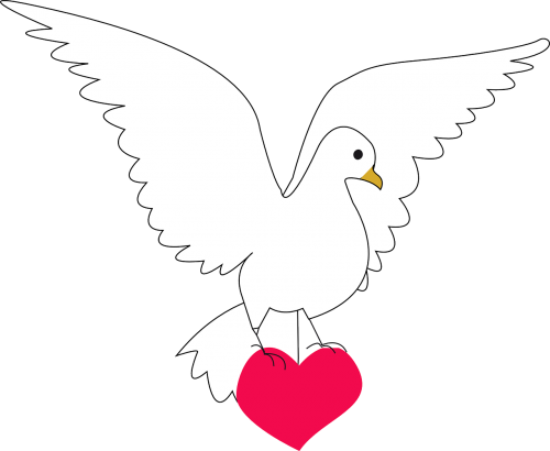dove heart amour