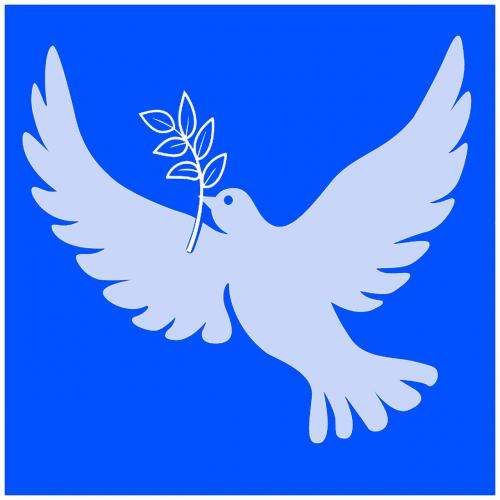 dove of peace peace white dove