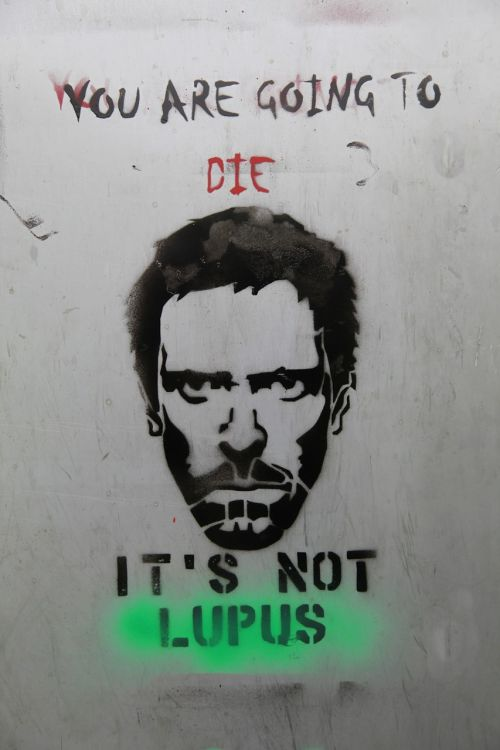 dr house street art hugh laurie