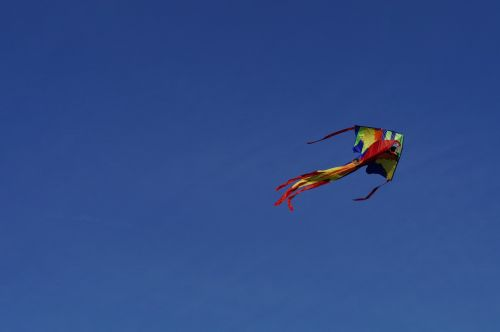 dragon kite flying kites rise