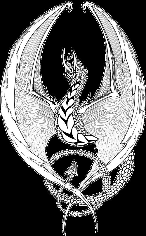 dragon fantasy lizard