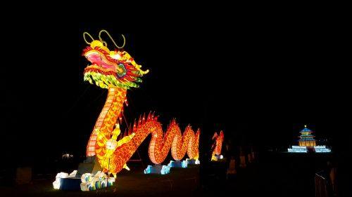 dragon lantern chinese
