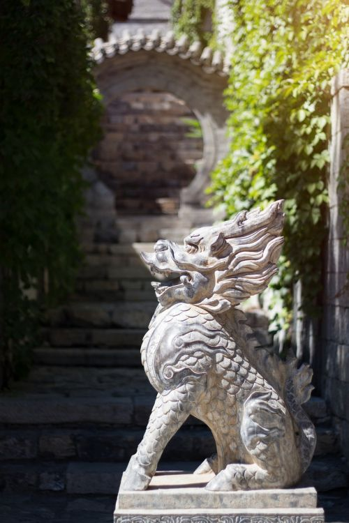 dragon lion stone