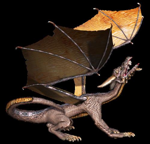 dragon wings looking
