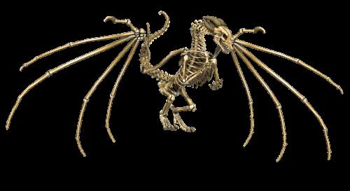 drakonas,skeletas,sparnai,skraidantis,fantazija,pasaka,3d,kaulai,legenda,png