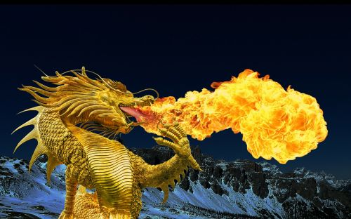 dragon fire breathing golden dragon