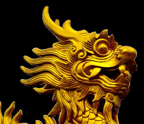 dragon gold golden dragon