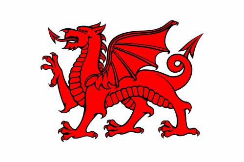 dragon welsh plain