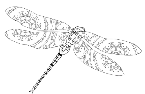 dragonfly  coloring  nature