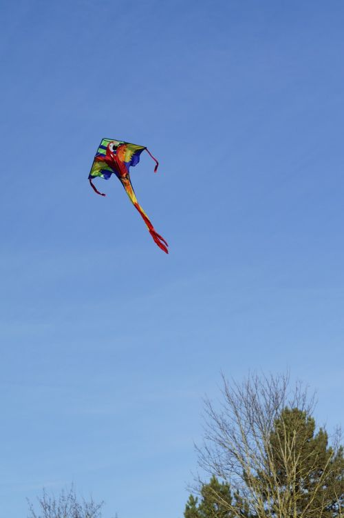 dragons kite flying sky