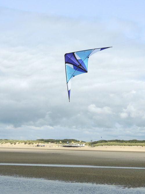 dragons sport fly
