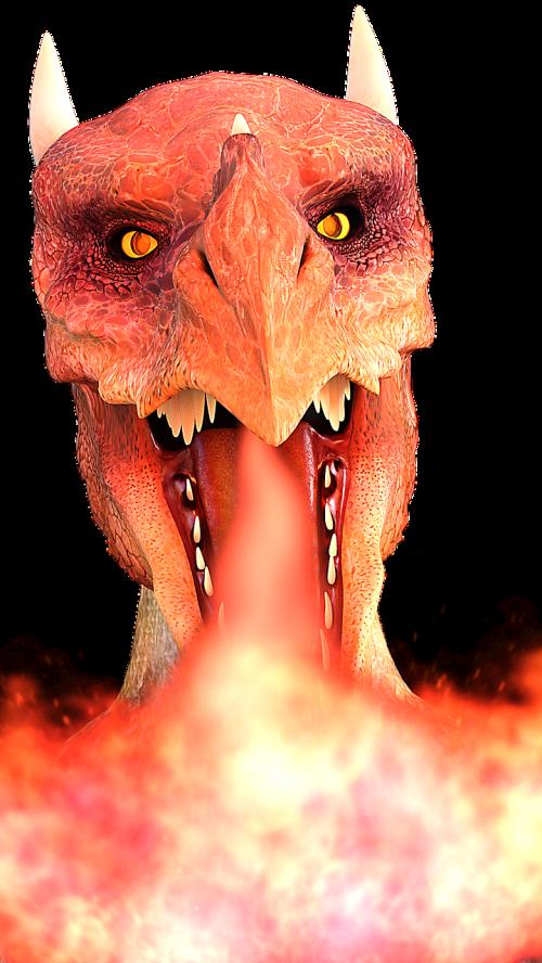 dragons fire dragon fire