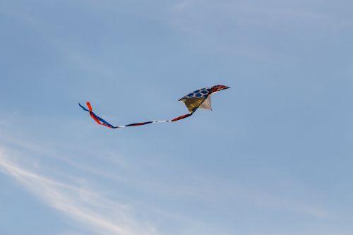 dragons autumn kite flying