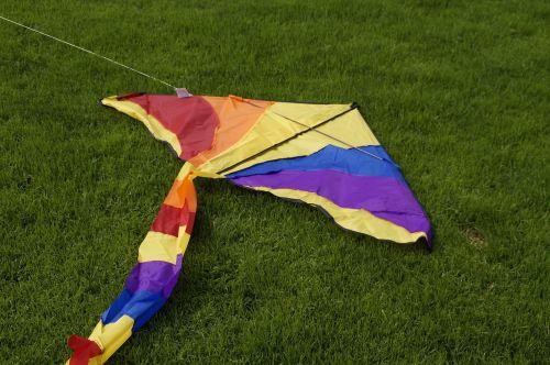 dragons colorful kites rise