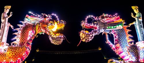 dragons chinese chinese dragon