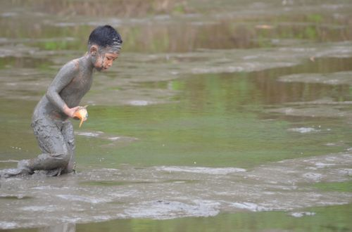 Drain Pond Fish