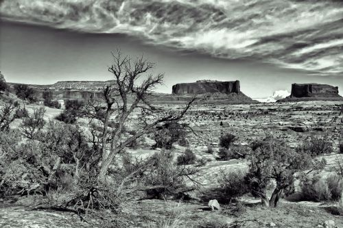 dramatic spooky desert