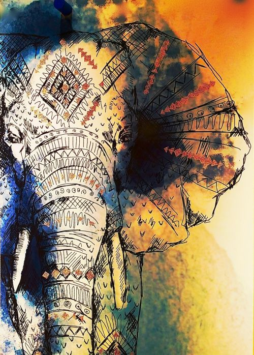 drawing elephant colorful