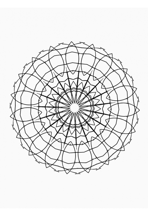 drawing hand drawn mandala