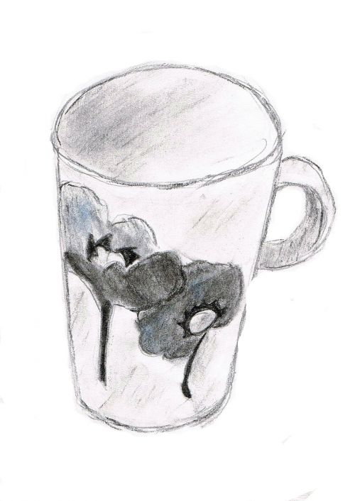 drawing cup sketch