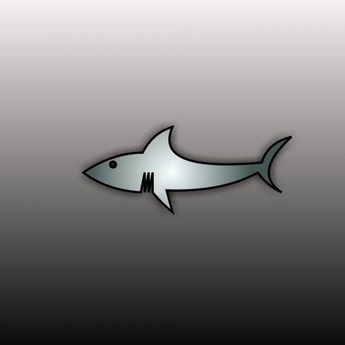 Drawing Shark