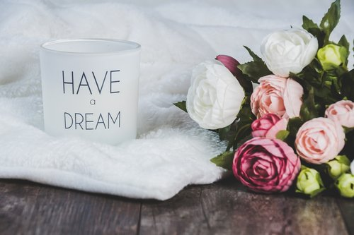 dreams  white background  flowers