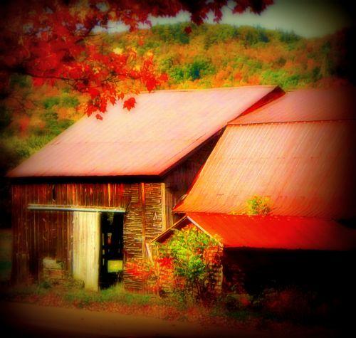 Dreamy Autumn Barns