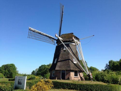 drenthe mill nature