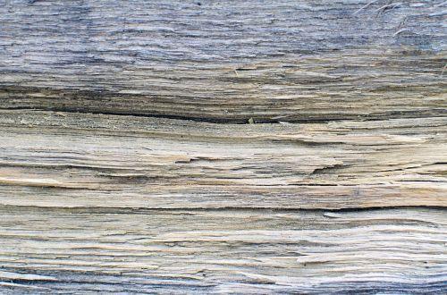 dřevo abstraktní pozadí