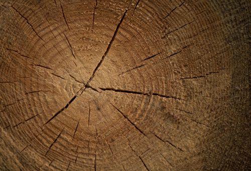 Wood - Background